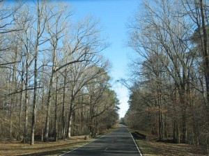 We drive out of Natchez State Park