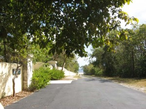 We walk through the back side of the Deering Estate towards Biscayne Bay.