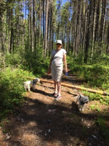 Margot and Rudi loved our walks on National Forest trials near our KOA in West Glacier.